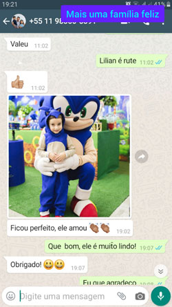 Fantasia do Sonic Completa